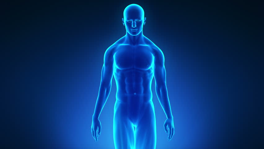 3D Body Scanning